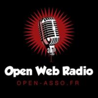 Logo de la radio Open Web Radio