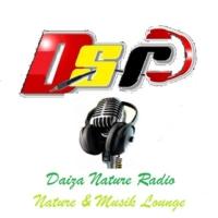 Logo of radio station D.S.R