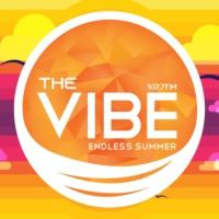 Logo of radio station TheVibe 107.7