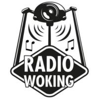 Logo of radio station Radio Woking