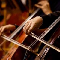 Logo of radio station Just playing Haydn