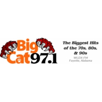 Logo of radio station WLDX Big Cat 97.1FM