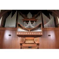Logo de la radio Radio Art - Organ