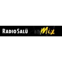 Logo of radio station RADIO SALÜ in the Mix