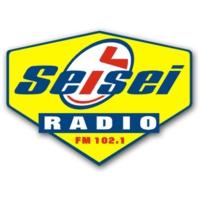 Logo de la radio Radio Sei Sei