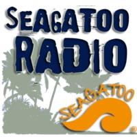 Logo de la radio Seagatoo Radio