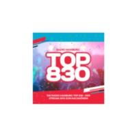 Logo de la radio Radio Hamburg Top 831