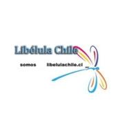 Logo de la radio Libélula Chile señal UNO