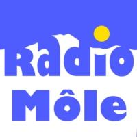 Logo de la radio Radio Môle
