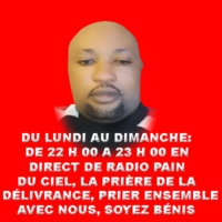 Logo de la radio RADIO  PAIN DU CIEL EN DIRECT