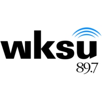 Logo of radio station WKSU HD3