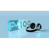 Logo de la radio FM 100