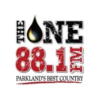 Logo de la radio The One 88.1 FM