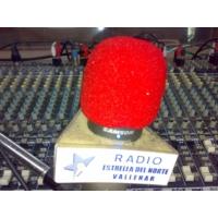 Logo de la radio Radio Estrella del Norte