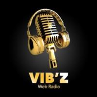 Logo de la radio Vib'Z