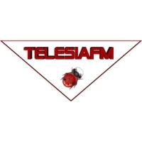 Logo de la radio Telesia Fm