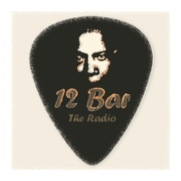 Logo de la radio 12 Bar - The Radio
