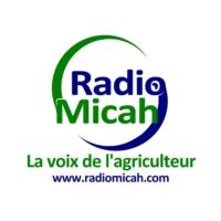 Logo of radio station Radio Micah