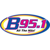 Logo of radio station WMGB B 95.1
