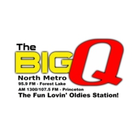 Logo of radio station WLKX-FM The Big Q