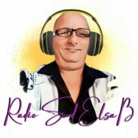 Logo of radio station RADIO SUD ELSASS   special volksmusik