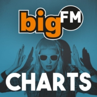 Logo of radio station bigFM - Charts