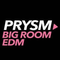 Logo of radio station Prysm EDM Big Room
