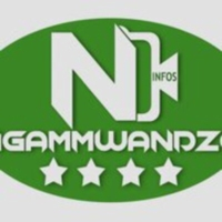 Logo of radio station Ngammwandzo infos