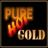 Logo de la radio Pure Hot Gold