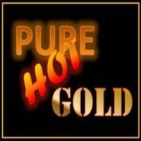 Logo of radio station Pure Hot Gold