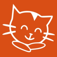 Logo of radio station the cat 107.9