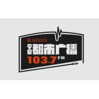 Logo de la radio 宁夏新闻广播 FM103.7