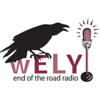 Logo of radio station WELY 94.5