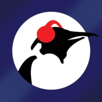 Logo of radio station Pinguin Blues