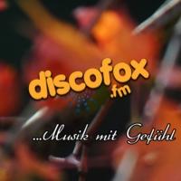 Logo de la radio Discofox FM