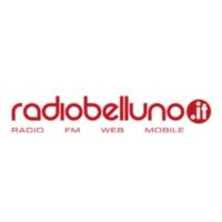 Logo of radio station Radio Belluno