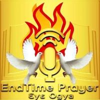 Logo of radio station Endtime Prayer Radio Italy