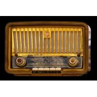 Logo of radio station Radio El Shalom 93.5 fm Pasadena Texas