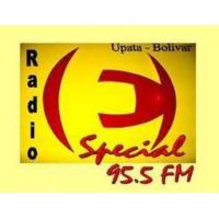 Logo de la radio Especial 95.5 FM