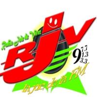 Logo of radio station RADIO JOIE DE VIVRE