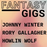 Logo of radio station Fantasy Gigs Blues Rock Live