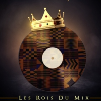 Logo of radio station LES ROIS DU MIX