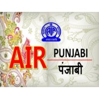 Logo of radio station AIR Punjabi