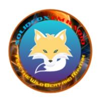 Logo of radio station SOLIDFOX FM Radio