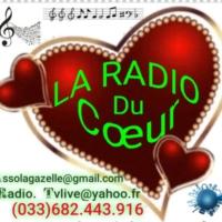 Logo of radio station LA RADIO DU COEUR