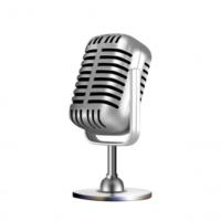 Logo de la radio PUNCH KREOL RADIO