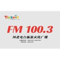 Logo de la radio 河北旅游文化广播 FM100.3