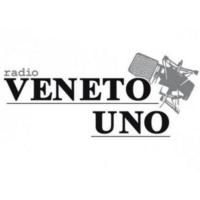Logo of radio station Radio Veneto Uno