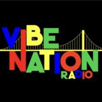 Logo de la radio Vibe Nation