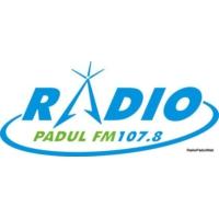 Logo of radio station Radio Padul